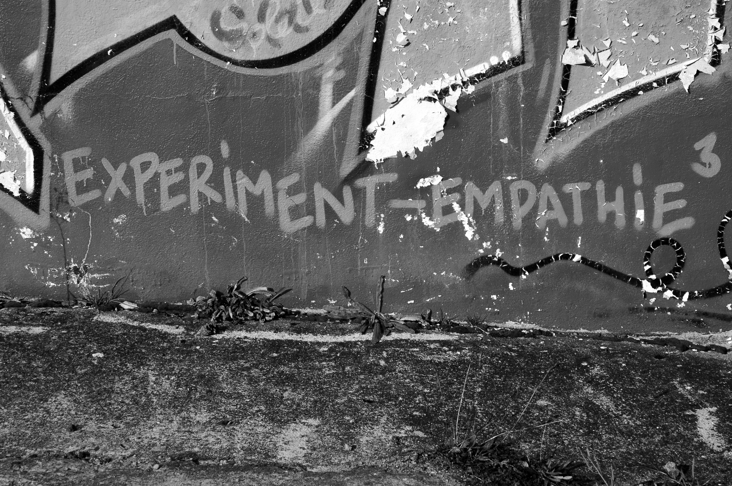 experiment-empathy-graffiti_bw